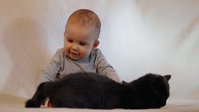 一个小快乐的孩子设法由尾巴捉住猫 与猫的婴孩戏剧 慢动作射击 影视素材