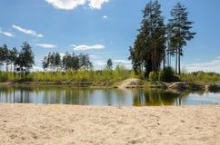 一个小池塘在乡下 免版税库存图片