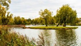 一个小海岛在公园 免版税图库摄影
