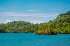一个小海岛在湖 库存图片