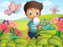一个小男孩在庭院里 库存图片