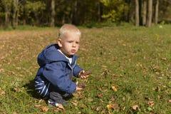 一个小男孩在森林公园在秋天走 免版税库存图片