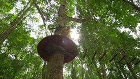 一个小男孩的慢动作射击安全带的在树梢的一条路线上升在森林冒险公园 他上升 影视素材