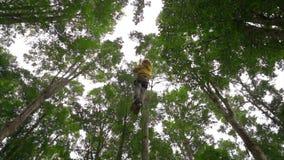 一个小男孩的慢动作射击安全带的在树梢的一条路线上升在森林冒险公园 他上升 股票视频