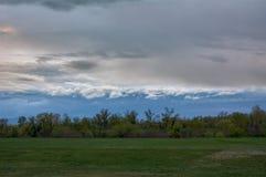一个小组树在最后草甸,在天空的风雨如磐的云彩的在Sava附近在萨格勒布 免版税库存图片