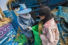 一个小组泰国农夫使用一个机器分离米仁, 免版税库存照片