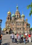 一个小组游人在Savio的大教堂前面站立 免版税库存照片