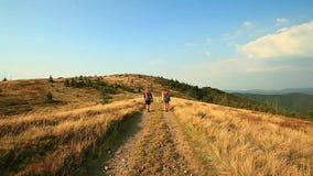 一个小组游人徒步去与沿足迹的背包与狗 影视素材