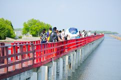 一个小组游人有走在长的红色木材木板走道是沿着江边的旅游胜地在沿海线附近 免版税图库摄影