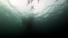 一个小组的剪影巴伦支海潜水者水中  股票录像