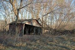 一个小被风化的棚子早晨 库存图片