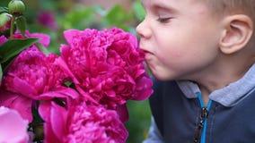 一个小逗人喜爱的婴孩轻轻地享用花的气味 孩子拾起花并且吸入它的芬芳 弄脏 股票录像