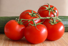 一个小组可口红色蕃茄,安排在一块竹板材 免版税库存照片