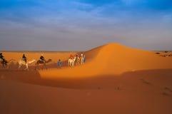 一个小组在撒哈拉大沙漠的骆驼旅行 图库摄影