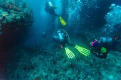 一个小组在珊瑚墙壁附近的潜水者 图库摄影