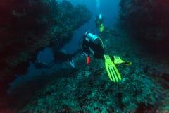 一个小组在珊瑚墙壁附近的潜水者 免版税库存图片
