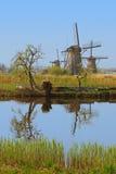 一个小组在kinderdijk的风车与树、河水反射和长的草在前景 免版税图库摄影
