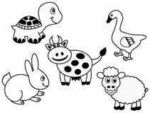 一个小组的表示法动物 免版税图库摄影