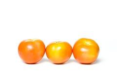 一个小组蕃茄 免版税库存照片