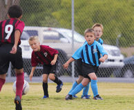一个小组青年足球运动员竞争 库存照片