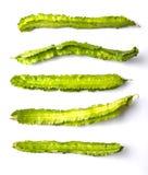一个小组飞过的豆菜VI 免版税库存照片
