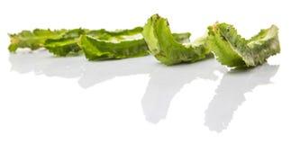 一个小组飞过的豆菜VII 免版税库存照片
