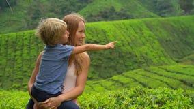 一个少妇和她的儿子的慢动作射击参观的高地茶园 新鲜,茶概念 影视素材