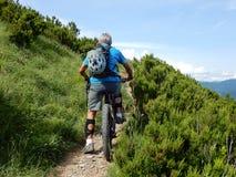 一个山骑自行车的人做的` delle木拉`公园的供徒步旅行的小道在热那亚,赫诺瓦,意大利 库存照片