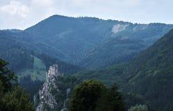 一个山Strecno加州风景和废墟的看法与森林的  免版税图库摄影
