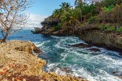 一个岩石小海湾的风雨如磐的海与棕榈树 免版税库存图片