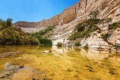 一个岩石峡谷的湖 库存照片