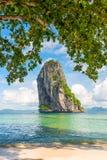 一个岩石的看法在从树的叶子的下面海 库存图片