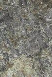 一个岩石 免版税图库摄影