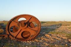 一个嵌齿轮 库存照片