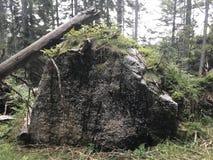 一个巨型岩石在阿尔卑斯 库存照片