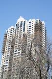 公寓在通过冬天树的蓝天下 免版税图库摄影