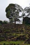 一个巨石站点在西爪哇省,印度尼西亚 它有数千  免版税库存照片