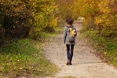 一个帽子的女孩有背包的在秋天森林B里走 库存图片