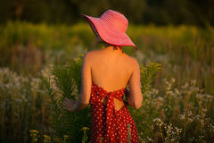 一个帽子的端庄的妇女在日落的野花中 免版税库存图片