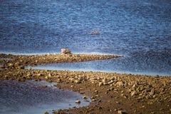 一个干河床和岩石的晴朗的河沿风景 在河附近的石平衡的建筑 库存照片