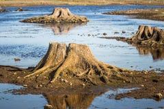一个干河床和岩石的晴朗的河沿风景 在河附近的石平衡的建筑 免版税库存照片