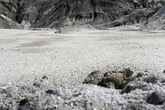 一个干燥沙漠峡谷的底部 免版税库存照片