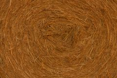 一个干草圆柱形大包的特写镜头在农田里 库存图片