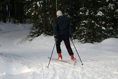一个年轻人乘坐速度滑雪 活跃冬天 活跃客人 非职业体育 库存图片