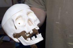 一个年轻人在他的手上拿着一块人的头骨的模型 库存图片