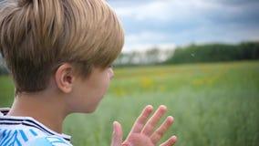 一个年轻人注视着入距离麦田 年轻人注视着麦田 暴风云是 股票录像