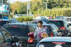 一个年轻人走在一条繁忙的高速公路的汽车之间并且卖花在布加勒斯特市在罗马尼亚 免版税库存图片