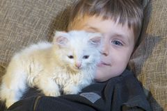 一个年轻和快乐的小男孩使用与在长沙发的一只白色猫 免版税图库摄影