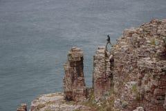 一个年轻攀岩运动员人跳过岩石反对海的背景 库存图片