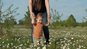 一个年轻母亲走与她的花田的孩子 握她的儿子的手的妇女在公园 一个小男孩是 影视素材